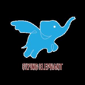 Flyng Elephant